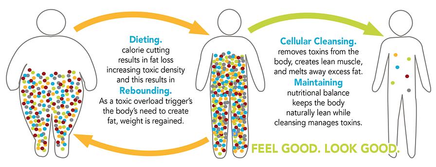 Nutritional Rebalancing.png
